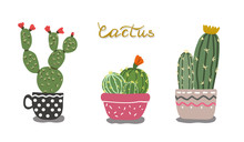 Vector Image Of Cactus In Flowerpots In Hand Drawn Style.