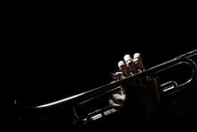 Trumpet Player. Hands Of Trump...