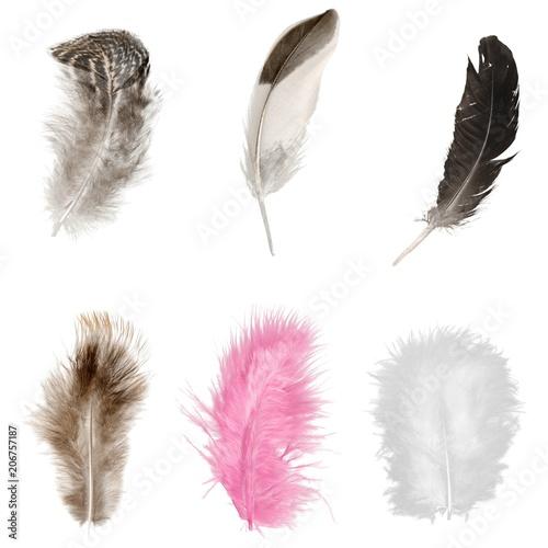 male-kolorowe-piorka-zestaw-pior-rozowe-biale-brazowe