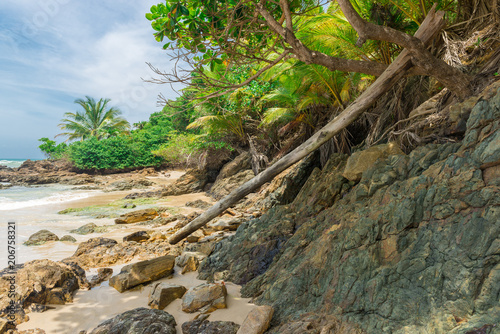 Spoed Foto op Canvas Natuur Beautiful beach nature near Itacare in Bahia