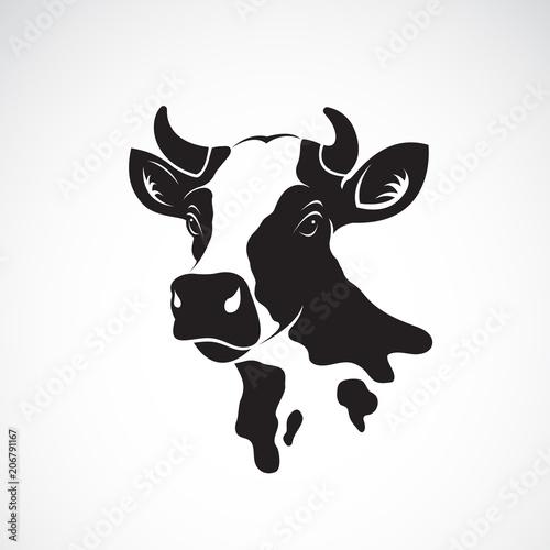 Fotografía Vector of cow head design on white background, Farm animal.