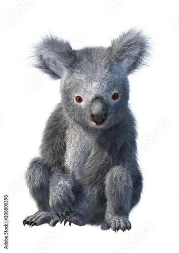 Fototapeta premium 3D renderowania Miś Koala na białym tle