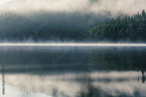 Fotografie, Obraz  Morning fog on the lake