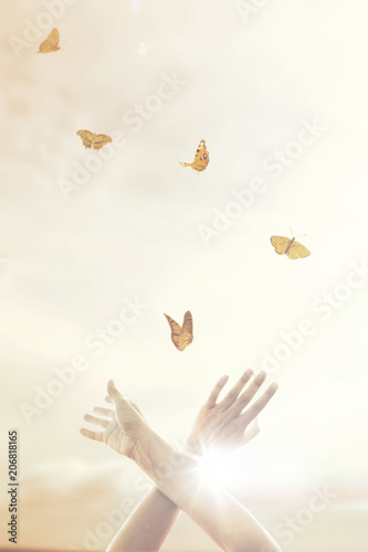 Fotografie, Obraz  woman's hands dance in harmony with some butterflies in the middle of nature