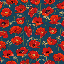 Seamless Pattern With Red Poppy Flowers And Buds On Dark. Bright, Juicy Red Buds