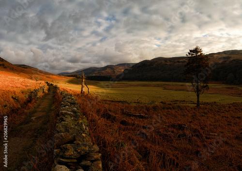 Fotobehang Chocoladebruin Irish Landscapes