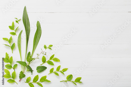 Tuinposter Bloemen floral pattern on white wooden background