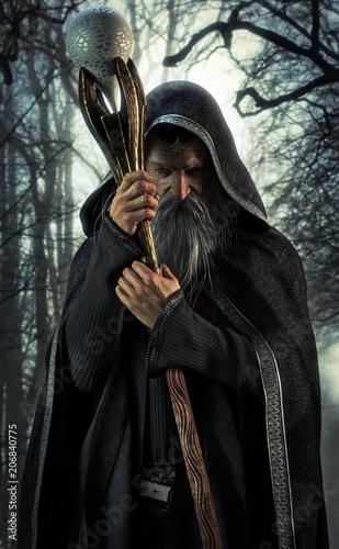 Fotografie, Obraz  Evil Warlock posing in an enchanted dark forest. 3d rendering