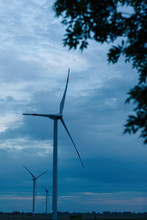 The Wind Farm In The Evening