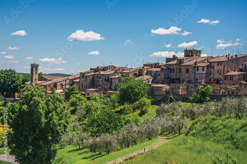 Photo  View of Colle di Val d Elsa town with olive trees and vegetation at the front