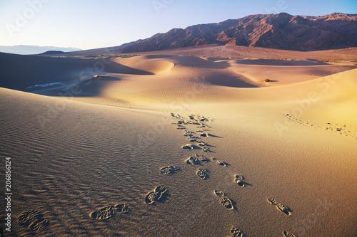 Foto op Plexiglas Cappuccino Sand dunes in California