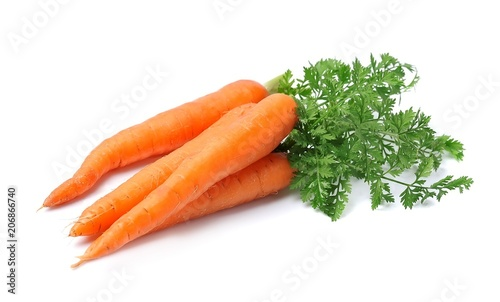 Fotografering Fresh carrots isolated closeup .