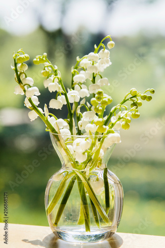 Foto op Plexiglas Lelietje van dalen Bouquet of lily of the valley blossoms; soft light illuminating the delicate flowers for a clean fresh look.