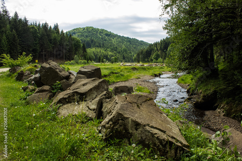 Papiers peints Noir Nature forest mountain valley with stream beautiful landscape
