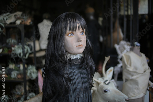 Valokuva Spooky Female Mannequin with Black Hair - Oddities