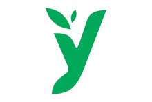 Letter Y Tree Concept Logo