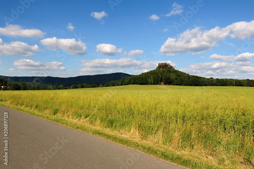 Foto op Plexiglas Honing Summer landscape with forests, meadows rocks and sky
