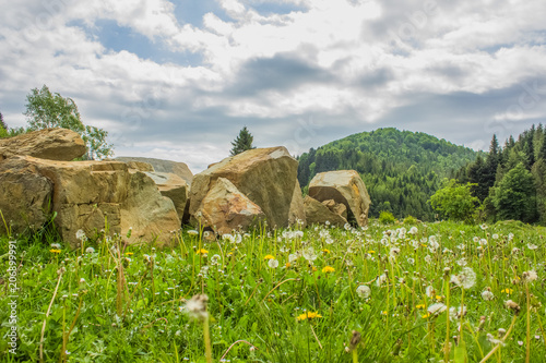 Fotobehang Wit mountain valley green nature landscape with stones