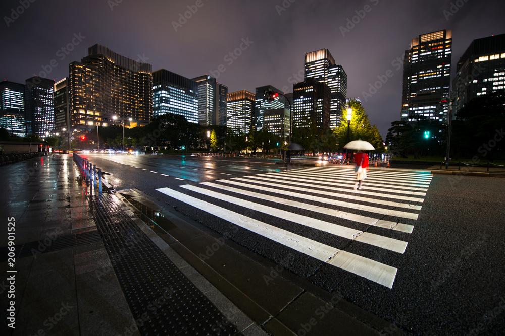 Fotografering  Tokyo at night, Japan