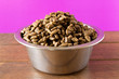 canvas print picture - Bowl with dog food on a wooden table