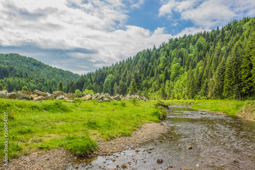 Staande foto Cappuccino green summer forest mountain landscape with river in valley somewhere on country side