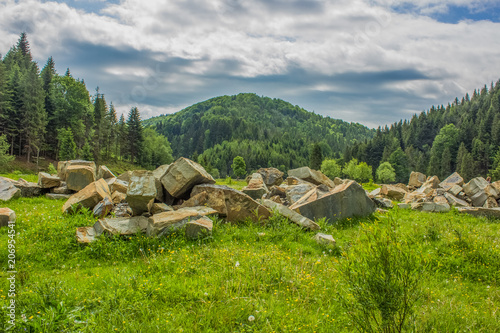 Foto op Aluminium Donkergrijs green summer forest mountain landscape somewhere on country side
