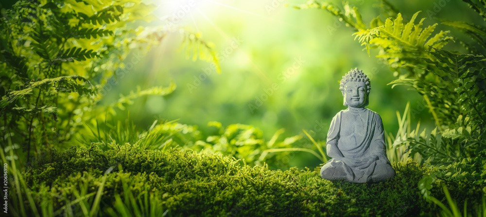 Fototapeta Buddha statu in natural background