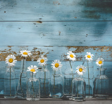 Daisy Flower In Glass Bottles