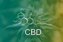 CBD Chemical Formula, Marijuan...
