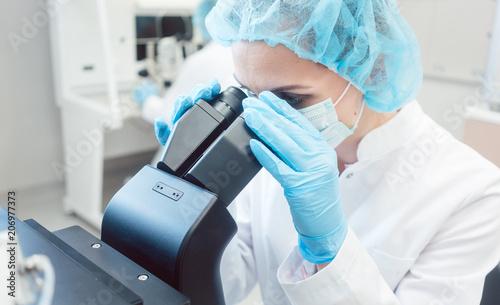 Fotografia  Wissenschaftlerin arbeitet im Labor am Mikroskop