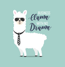 .Business Llama With No Drama Cute Card With Handrawn Alpaca. Greeting Card For Boss's Day Or Motivational Poster With Lettering. Vector Illustration.