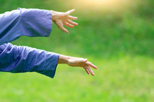 Hands In The Chinese Martial Art Tai Chi Chuan