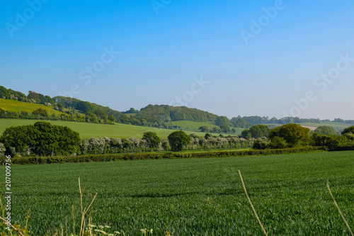 Foto op Aluminium Blauw The North Downs
