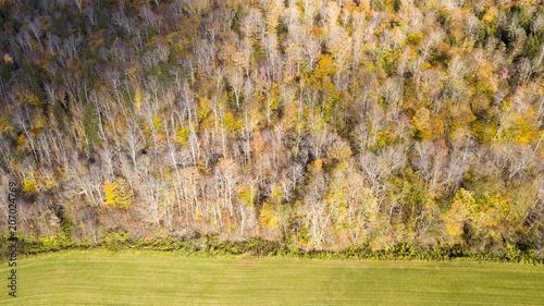 Fields Edge © Corey Hendrickson