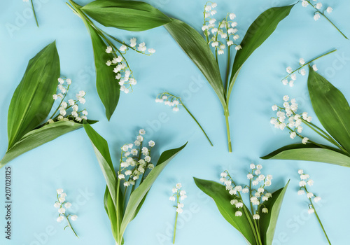 Staande foto Lelietje van dalen Lily of the Valley Flowers on a Blue Background.Spring Flowers Background