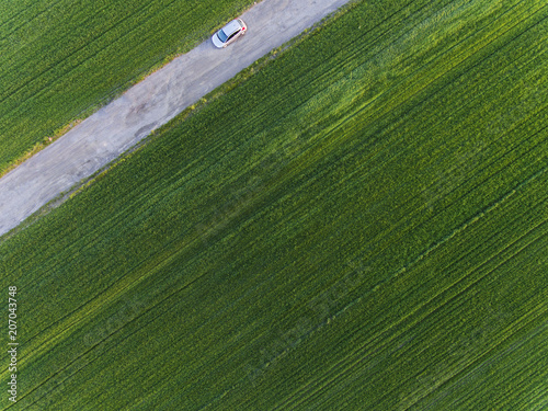 Tuinposter Weg in bos Road and green fields.