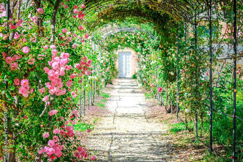 Recess Fitting Garden Garden path with roses on arches.