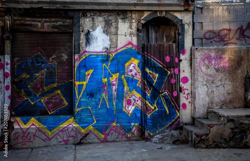 grafity pintados en muros Poster
