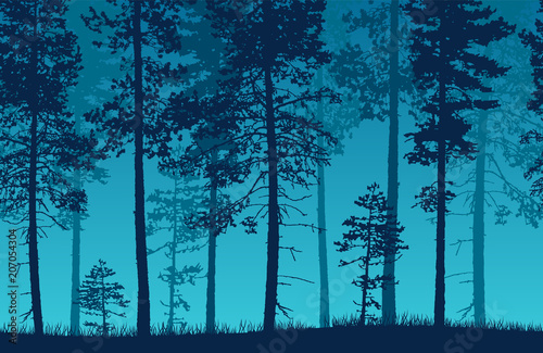 Foto op Canvas Nachtblauw Seamless blue vector forest landscape with coniferous trees and grassy land.