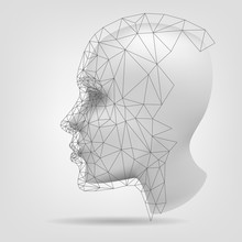 Stylized Human Head, Polygonal...