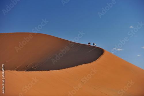 Foto op Plexiglas Droogte Namibia. Red dunes in the Namib Desert.