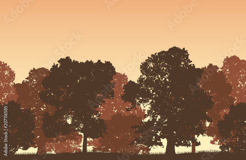 Foto op Aluminium Chocoladebruin Seamless brown vector forest landscape with deciduous trees and grassy land.