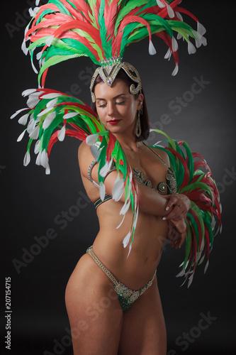 Montage in der Fensternische Karneval Beautiful woman in carnival costume.