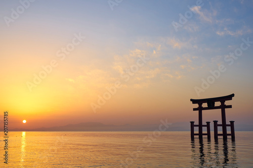 Obraz 夜明けの白髭神社の鳥居 - fototapety do salonu