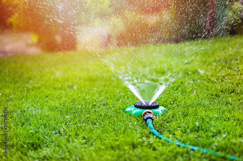 Poster Jardin garden sprinkler watering grass at home backyard