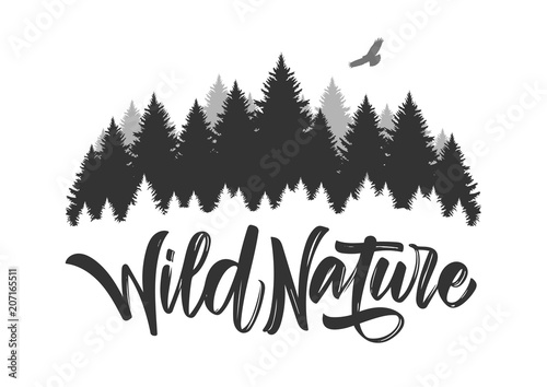 Fotografía  Vector illustration: Hand drawn type lettering of Wild Nature with silhouette of Pine Forest and Hawk