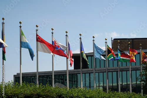 Fotografía  flags outside united nations building in new york