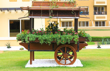 Decorative Cart With Flowers