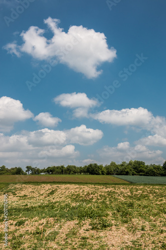 Fotobehang Blauwe jeans German countryside with forests, fields and meadows