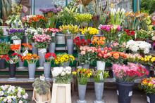 Outdoor Flower Market With Ros...
